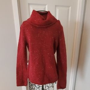 Express brand comfy cowl neck sweater